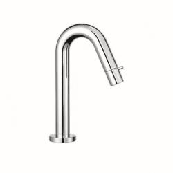 Bras de robinet chromé (380160530)